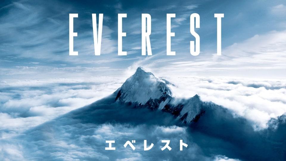 エベレスト 3D画像