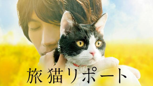 旅猫リポート(映画)画像